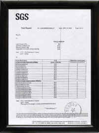 GSG检测报告